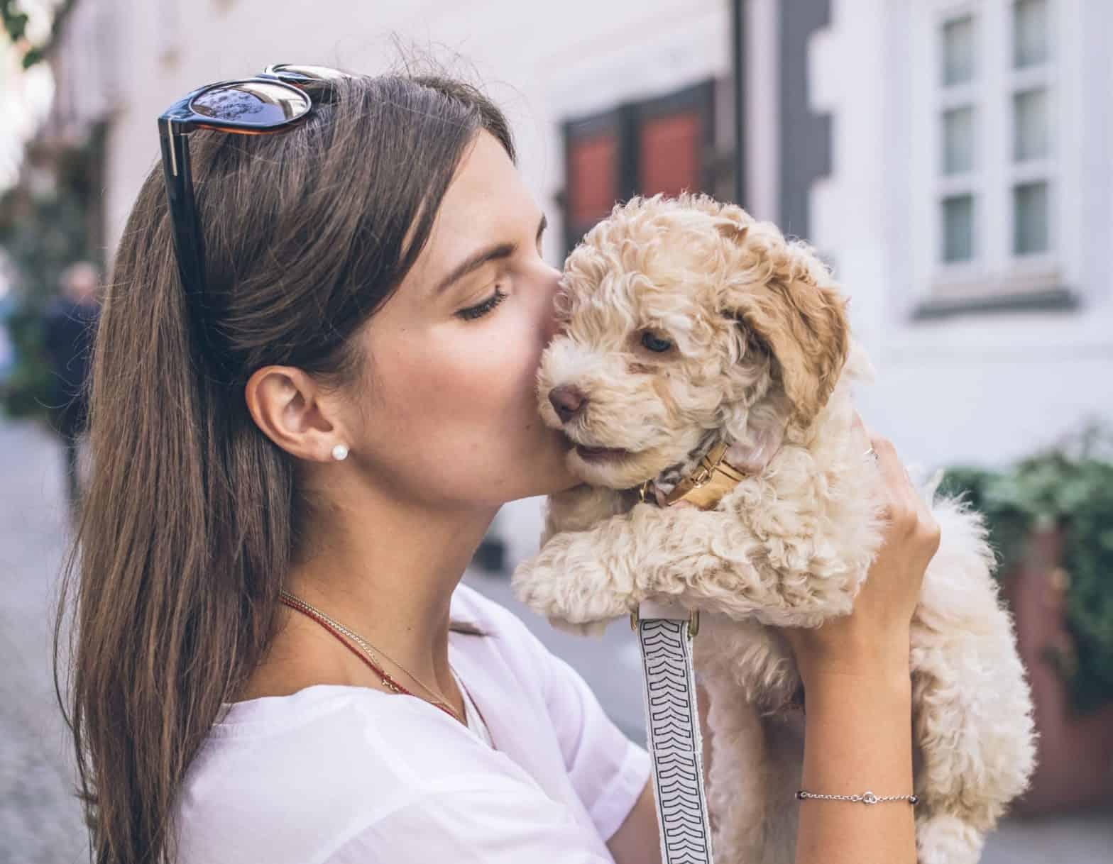 Meisje met zonnebril die haar pup knuffelt.
