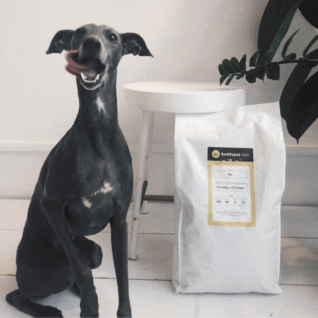 Zwarte hond die haar bek aflikt bij het zien van de grote zak hondenvoeding van BuddyBites