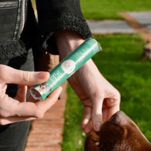Hondenkoekje geven aan hond