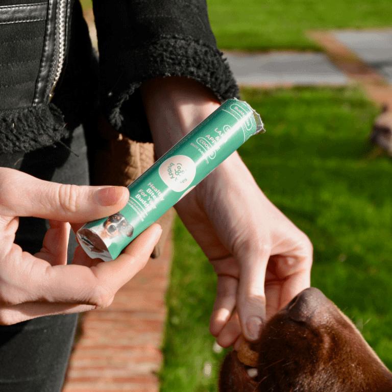 Baasje heeft aan haar hond een lam en appel hondenkoekje, die per 12 verpakt zitten in een handige rol.