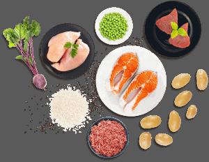 buddybites werkt met natuurlijke ingredienten, veel vlees, extra zalmolie en vezels