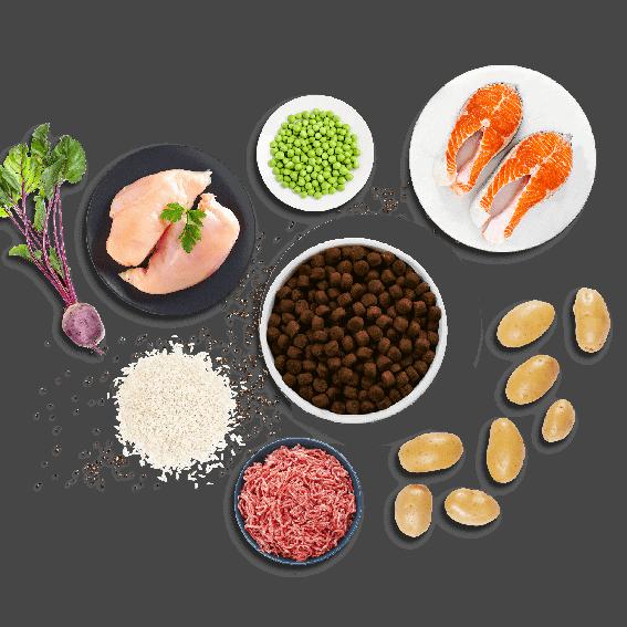 Bij buddyBites gebruiken we alleen maar lokale, verse en natuurlijke ingrediënten met veel vlees, hoogwaardige eiwitten, vetten, vitaminen en mineralen. De perfecte keus voor een hond die hypoallergene, graanvrije of glutenvrije voeding nodig heeft.