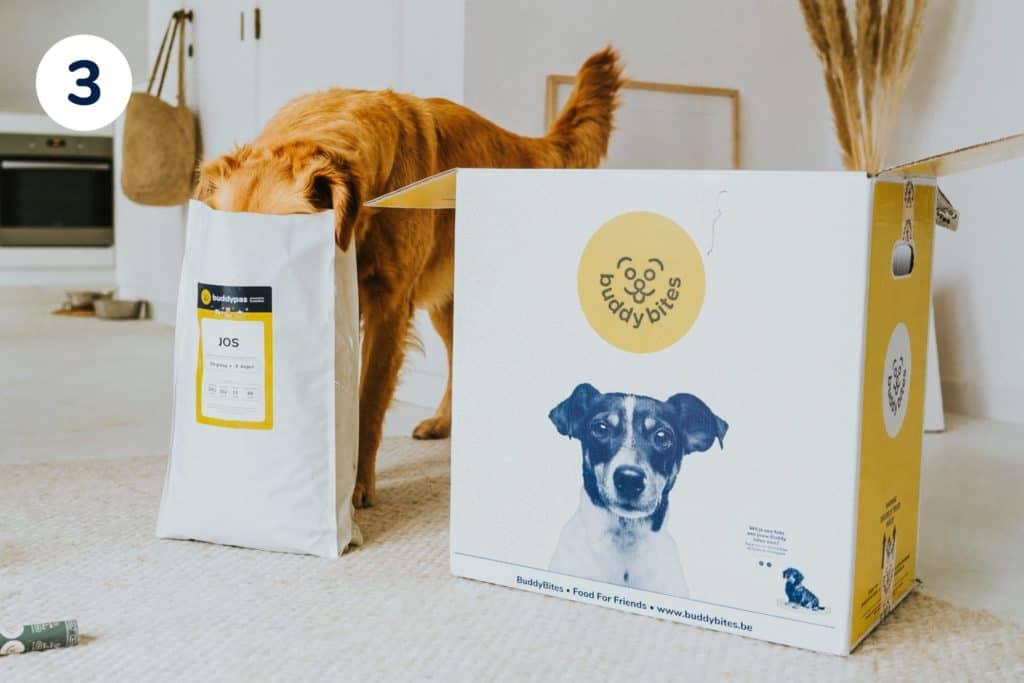 hond met zijn snuit in de zak met gepersonaliseerde hondenvoeding van buddybites