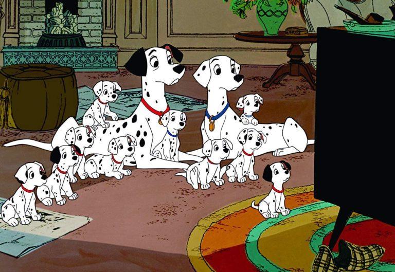 101 dalmatiers kijken televisie, op zoek naar gezonde voeding of voer voor puppies