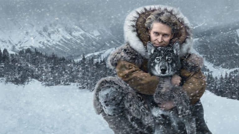husky in de sneeuw kijkt in de camera terwijl hij een knuffel krijgt van zijn baasje