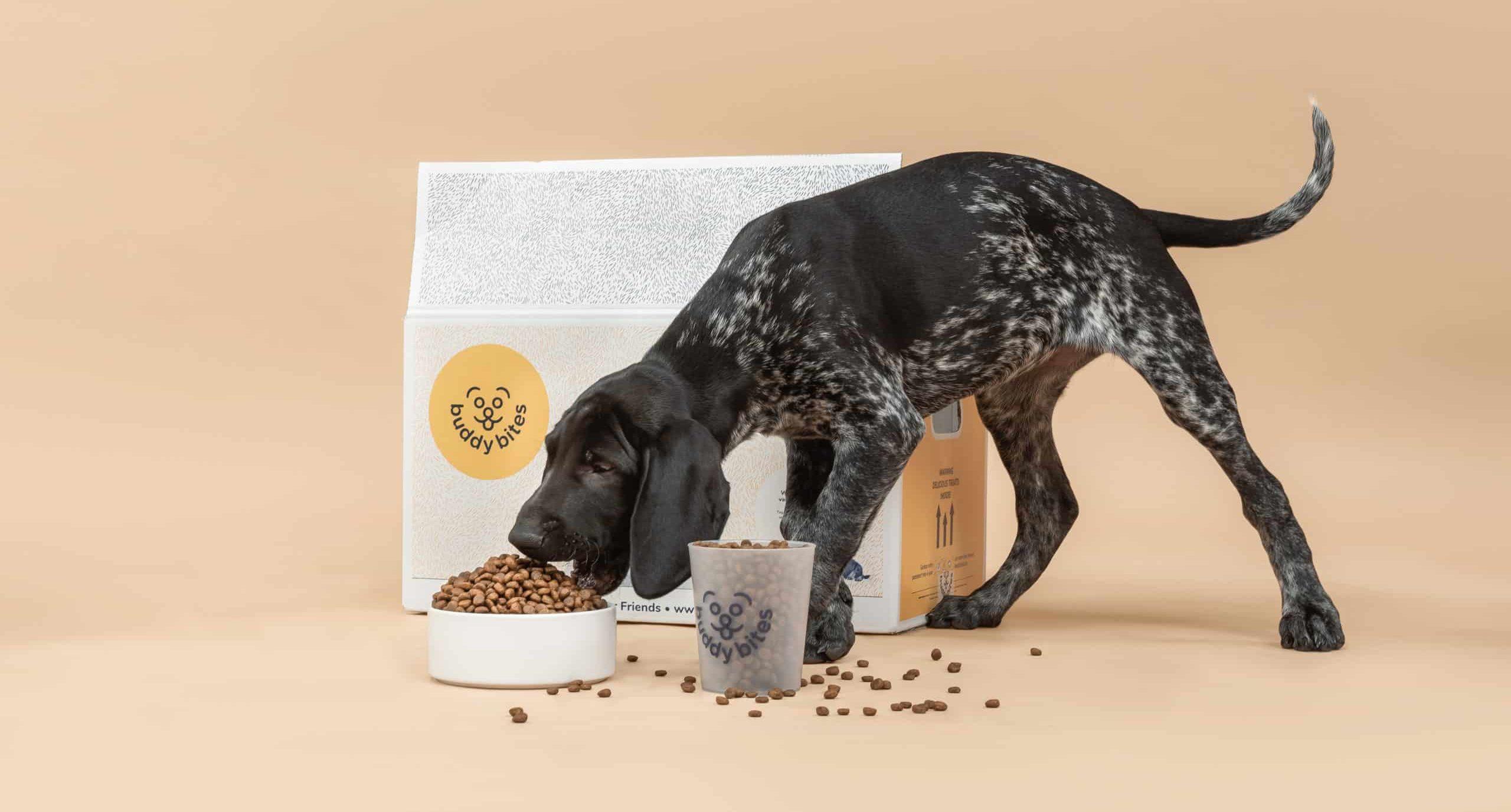 Duitse herder pup eet van zijn brokjes BuddyBites