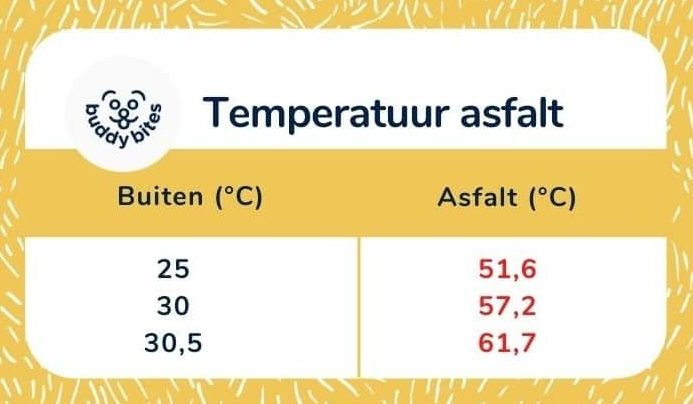 De temperatuur van het asfalt is hoger dan de buitentemperatuur. De pootjes van je hond kunnen hier niet goed tegen.