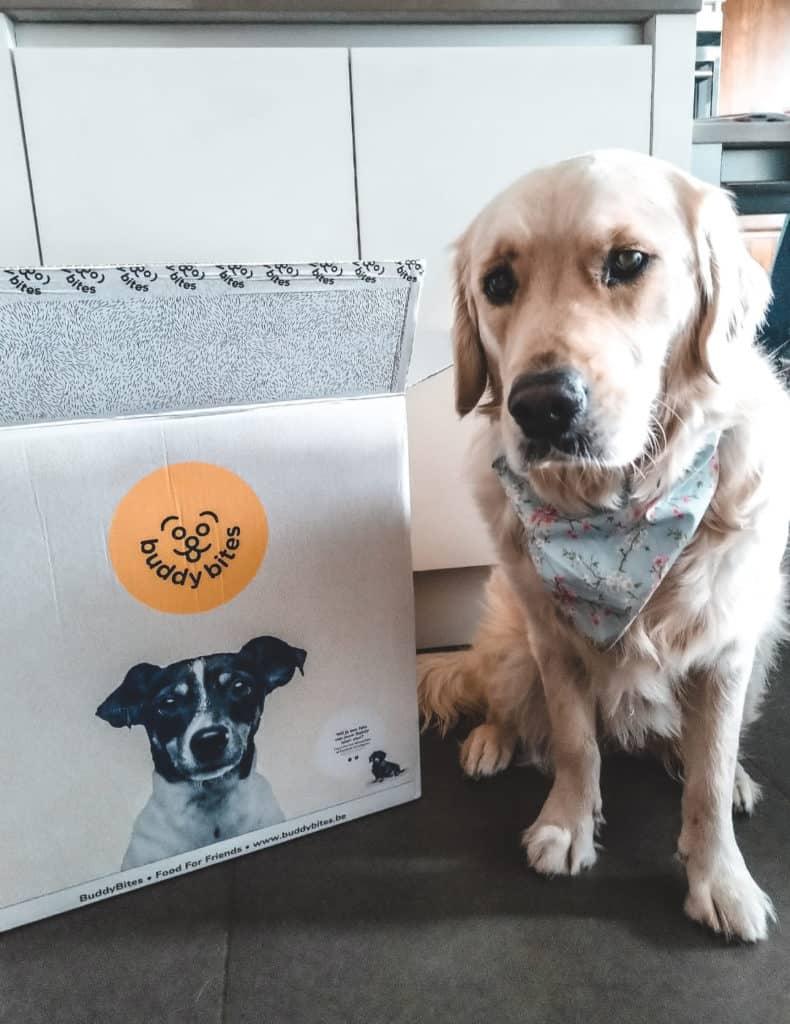 Je zoekt specifiek premium hondenvoer