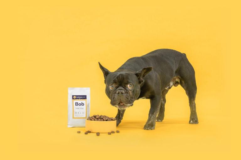 hondenvoeding op maat uitproberen